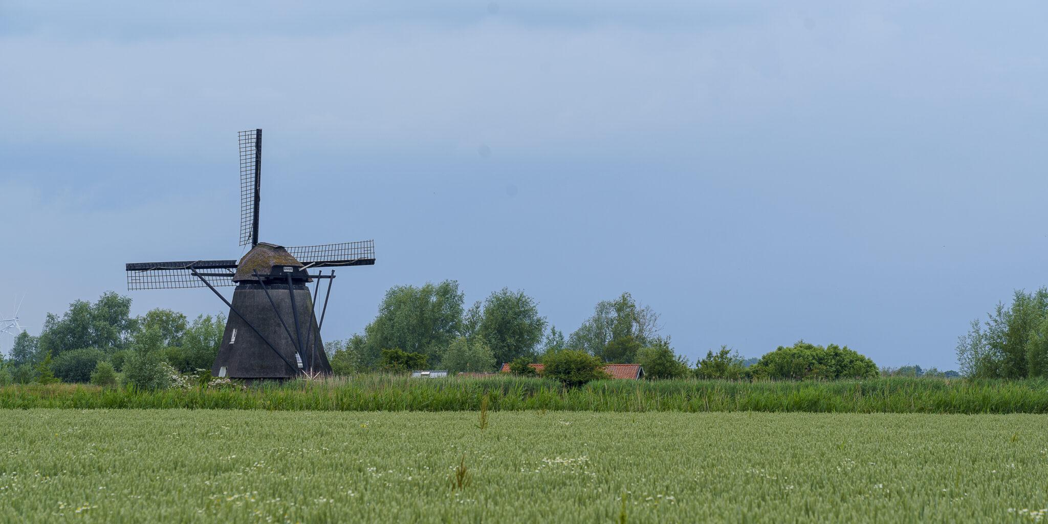 De Steendert